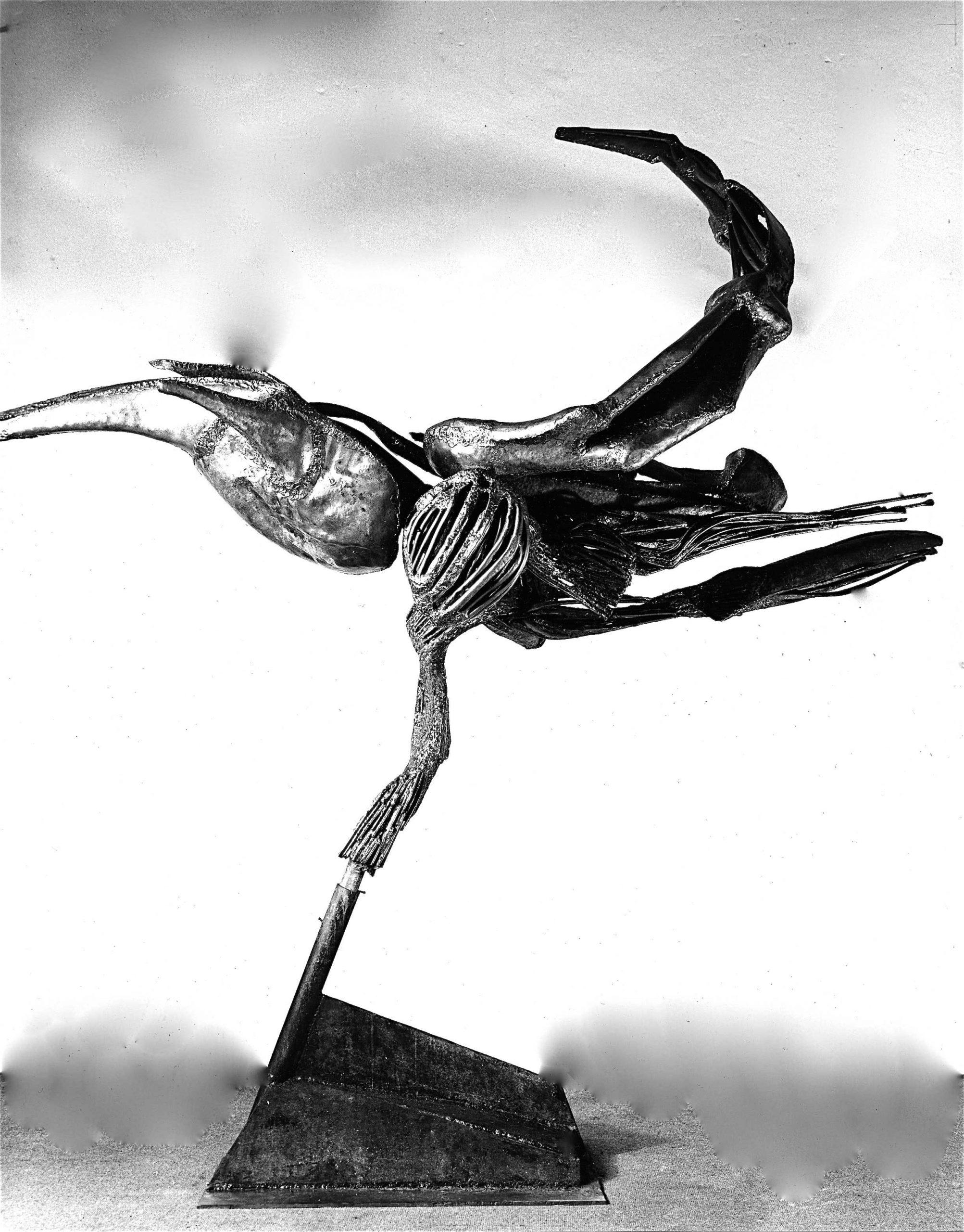 L-oiseau-dansant-01