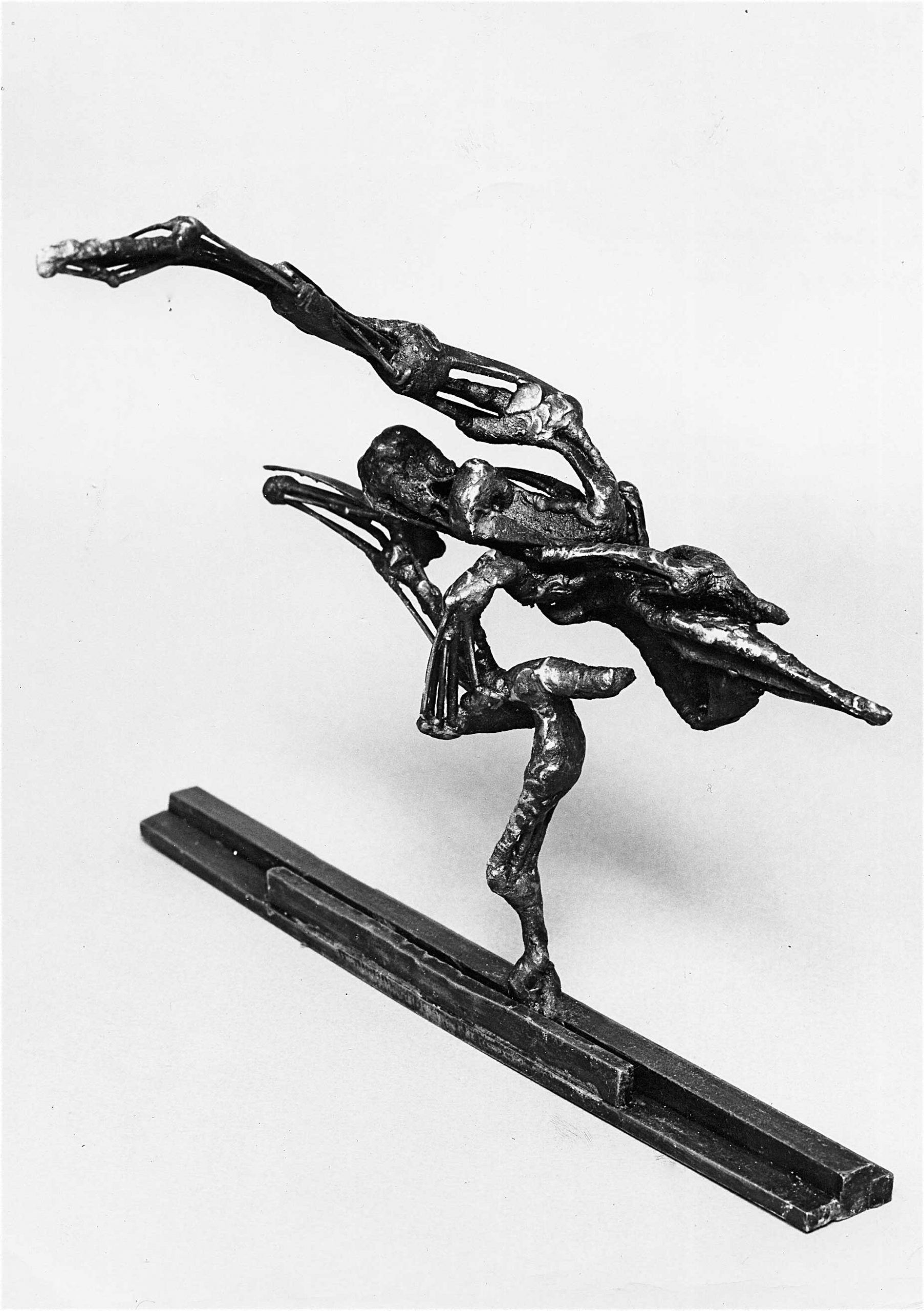 L-oiseau-dansant-03