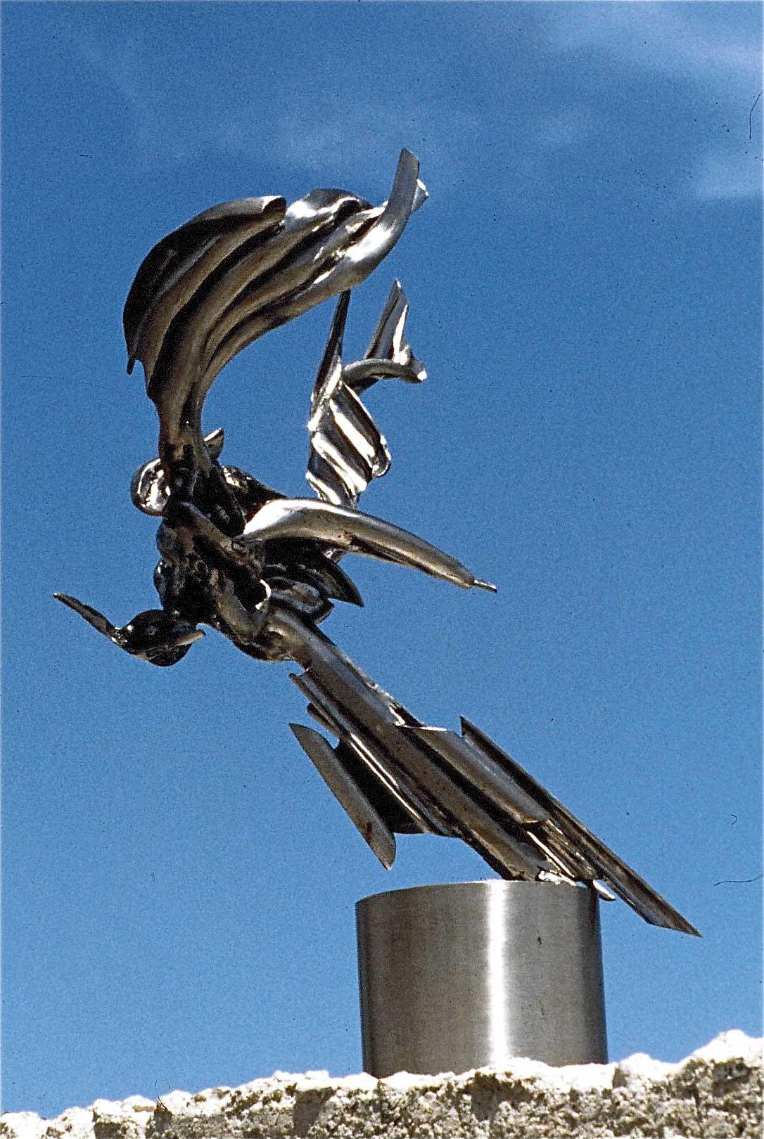 L-oiseau-de-Don-Quixotte-01