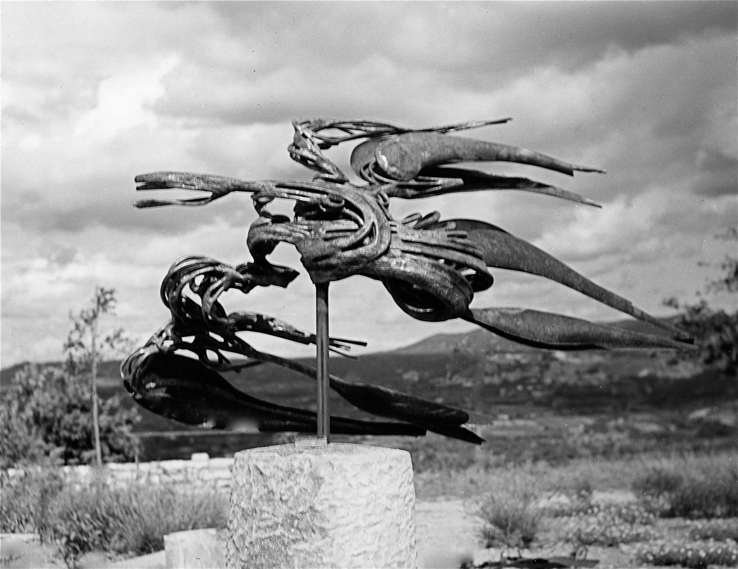 L-oiseau-de-la-montagne-01