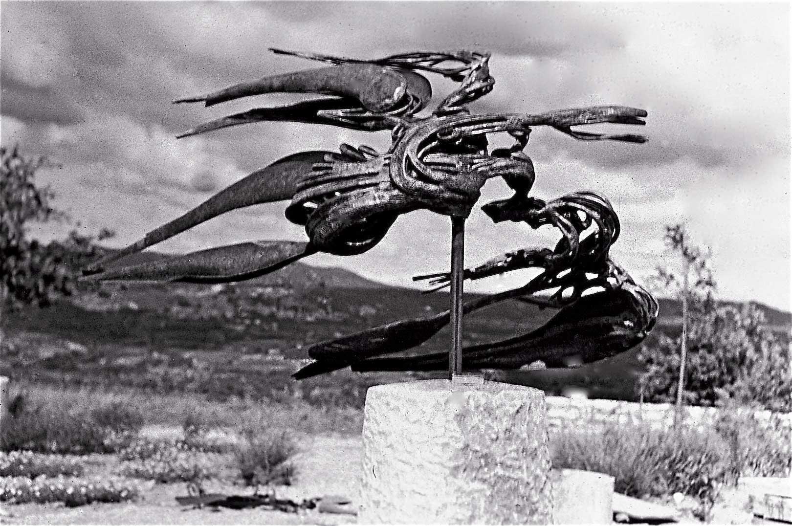 L-oiseau-de-la-montagne-02