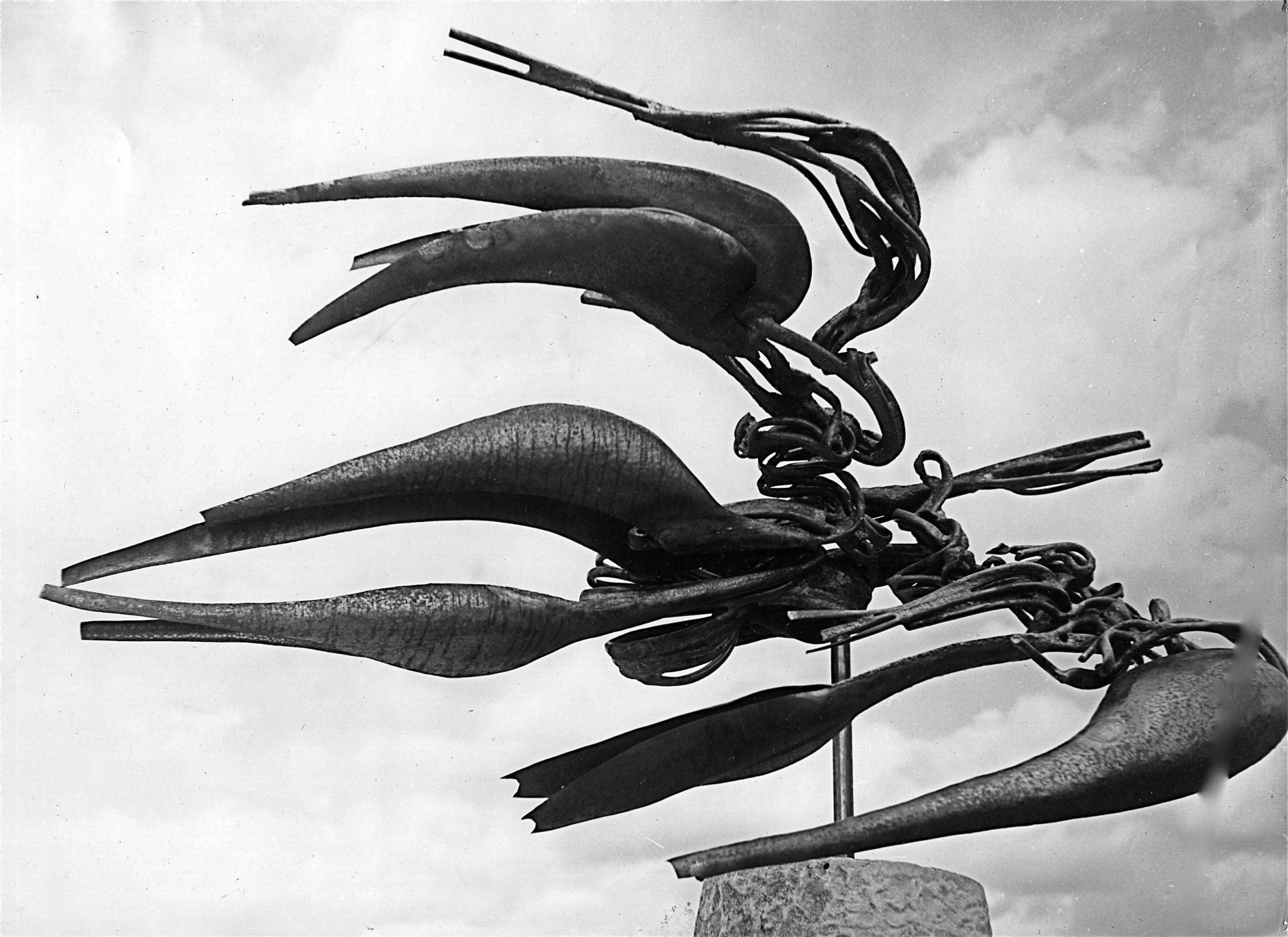 L-oiseau-de-la-montagne-03