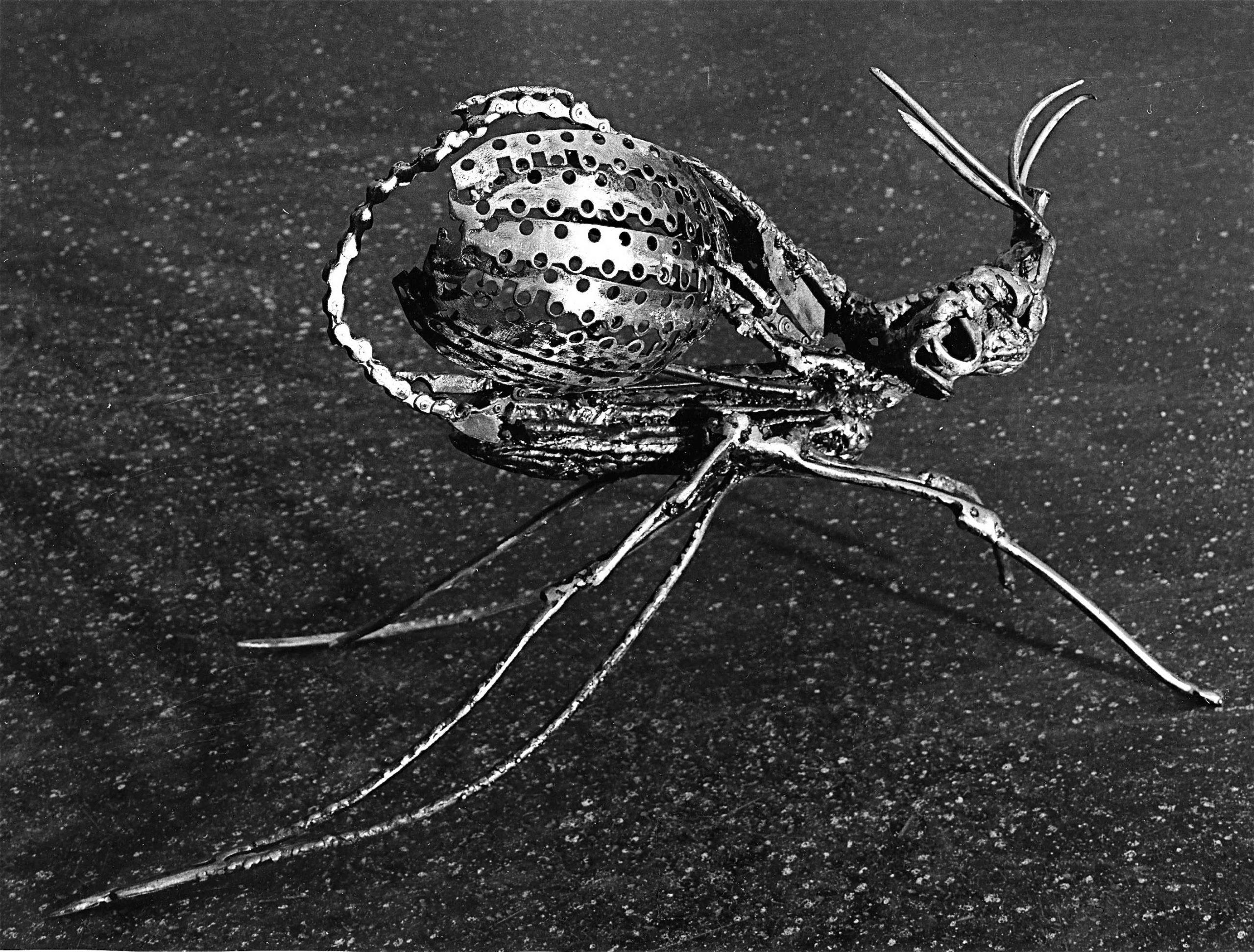 Le-moustique-01