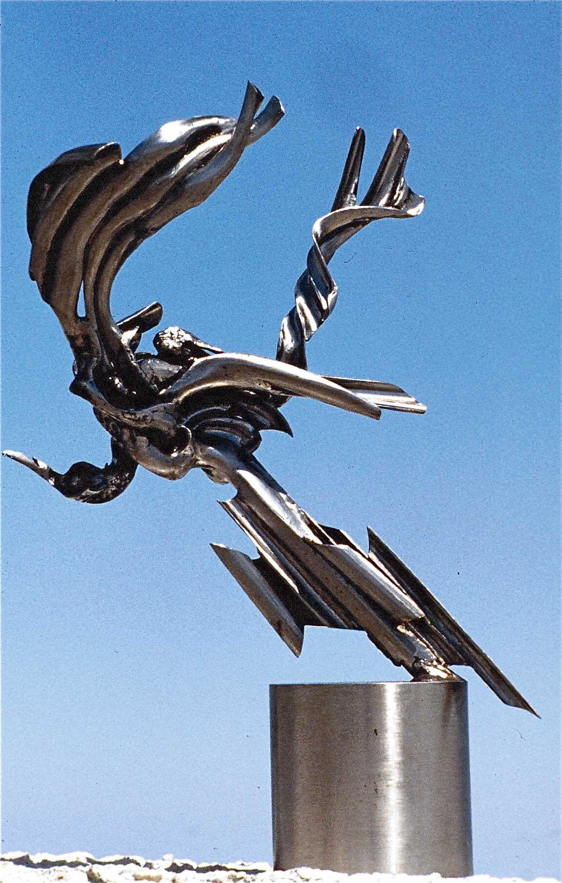 L-oiseau-de-Don-Quixotte-02
