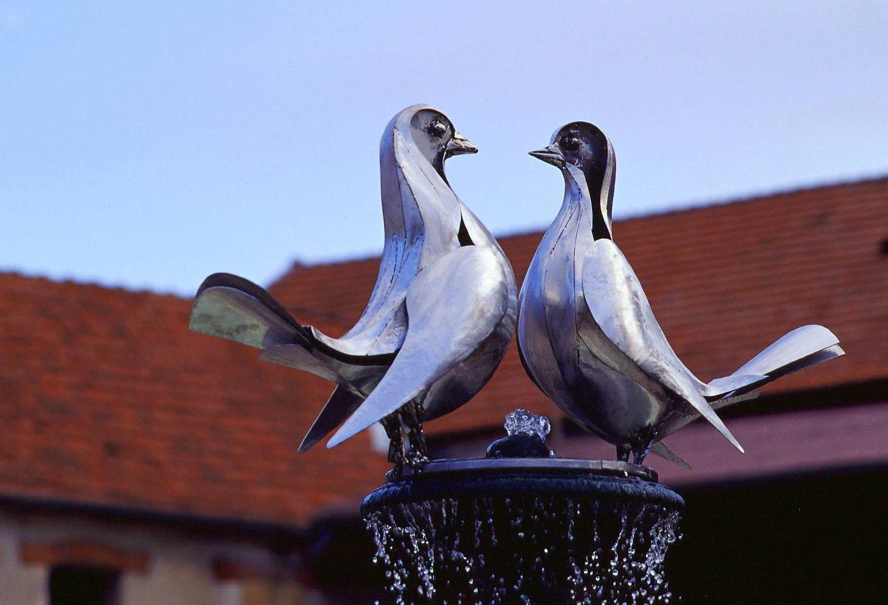 2pigeons6