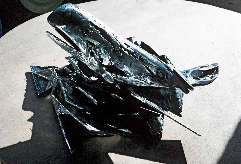La-baleine-4