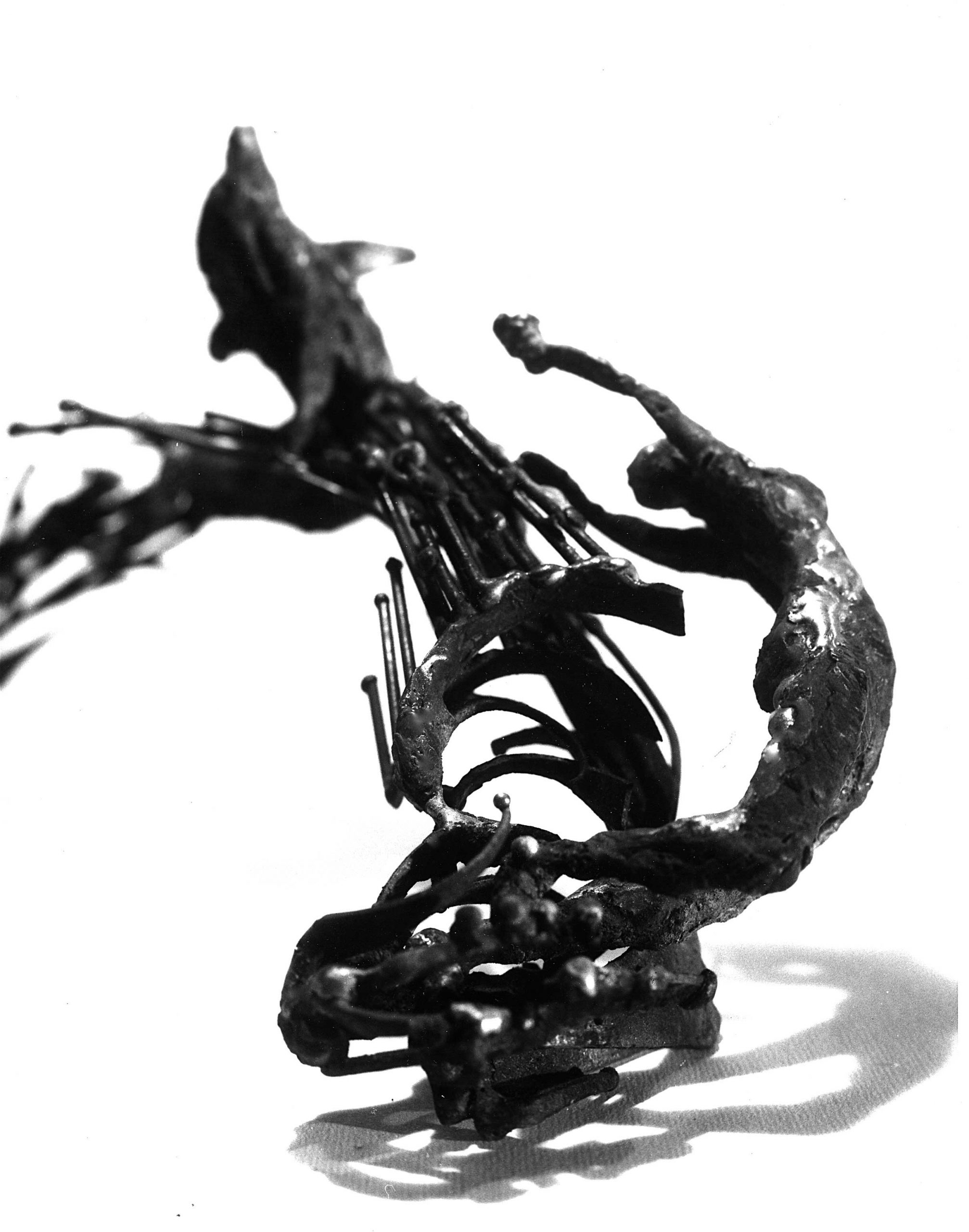 La-fontaine-du-dauphin-03