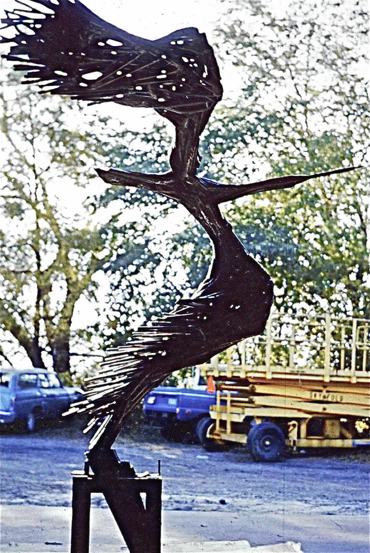 WHEELING-BIRD-2
