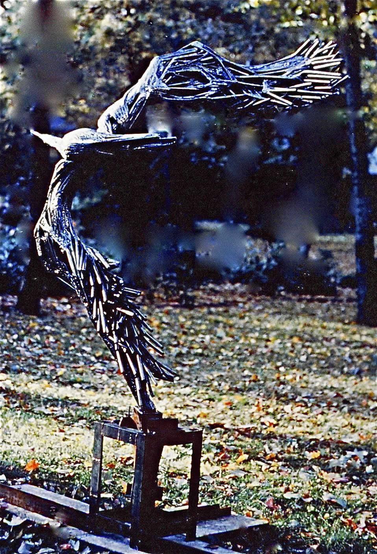 WHEELING-BIRD-3