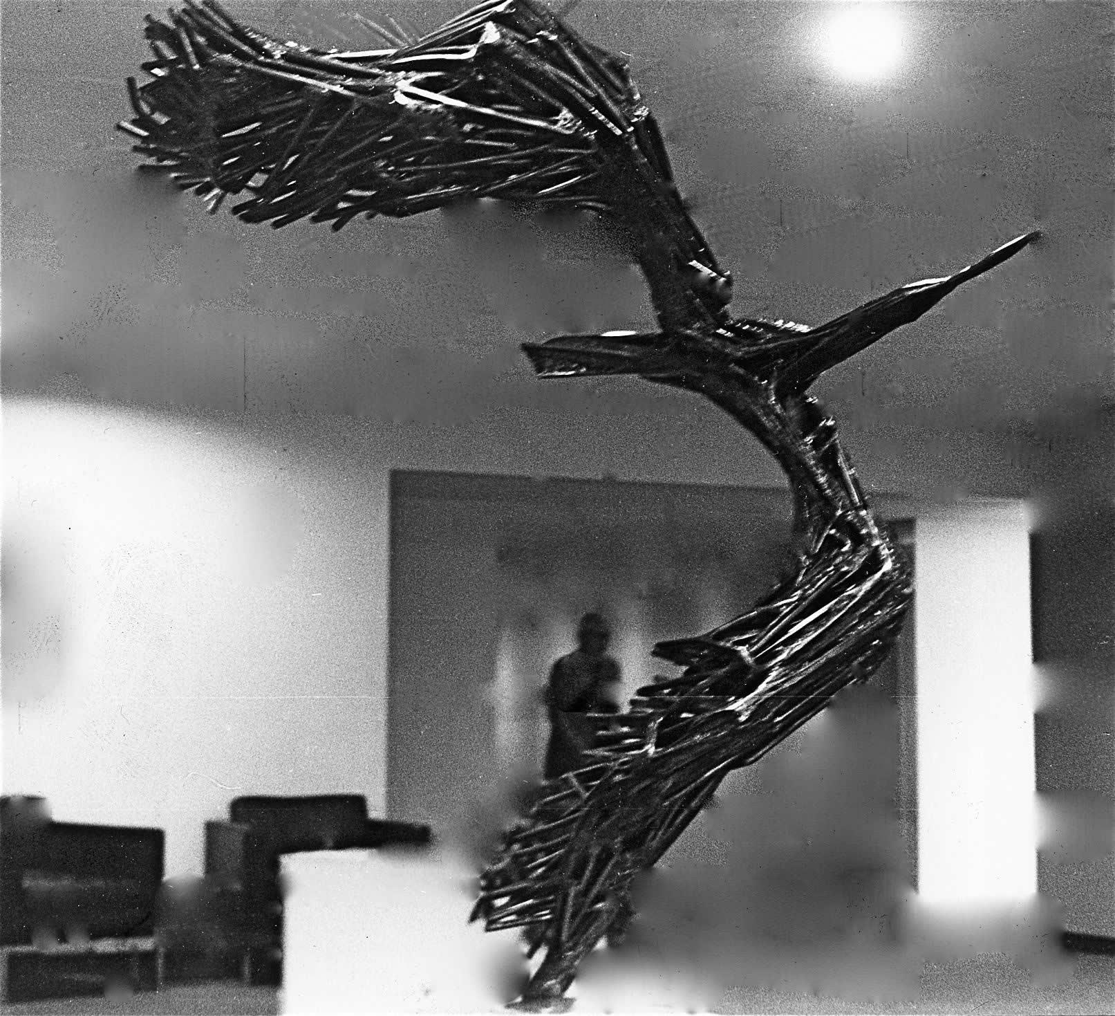 WHEELING-BIRD-4